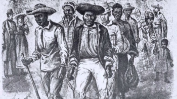 Nat Turner Revolution